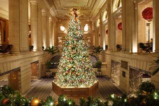 cool december in chicago happenings - Chicago Christmas Tree